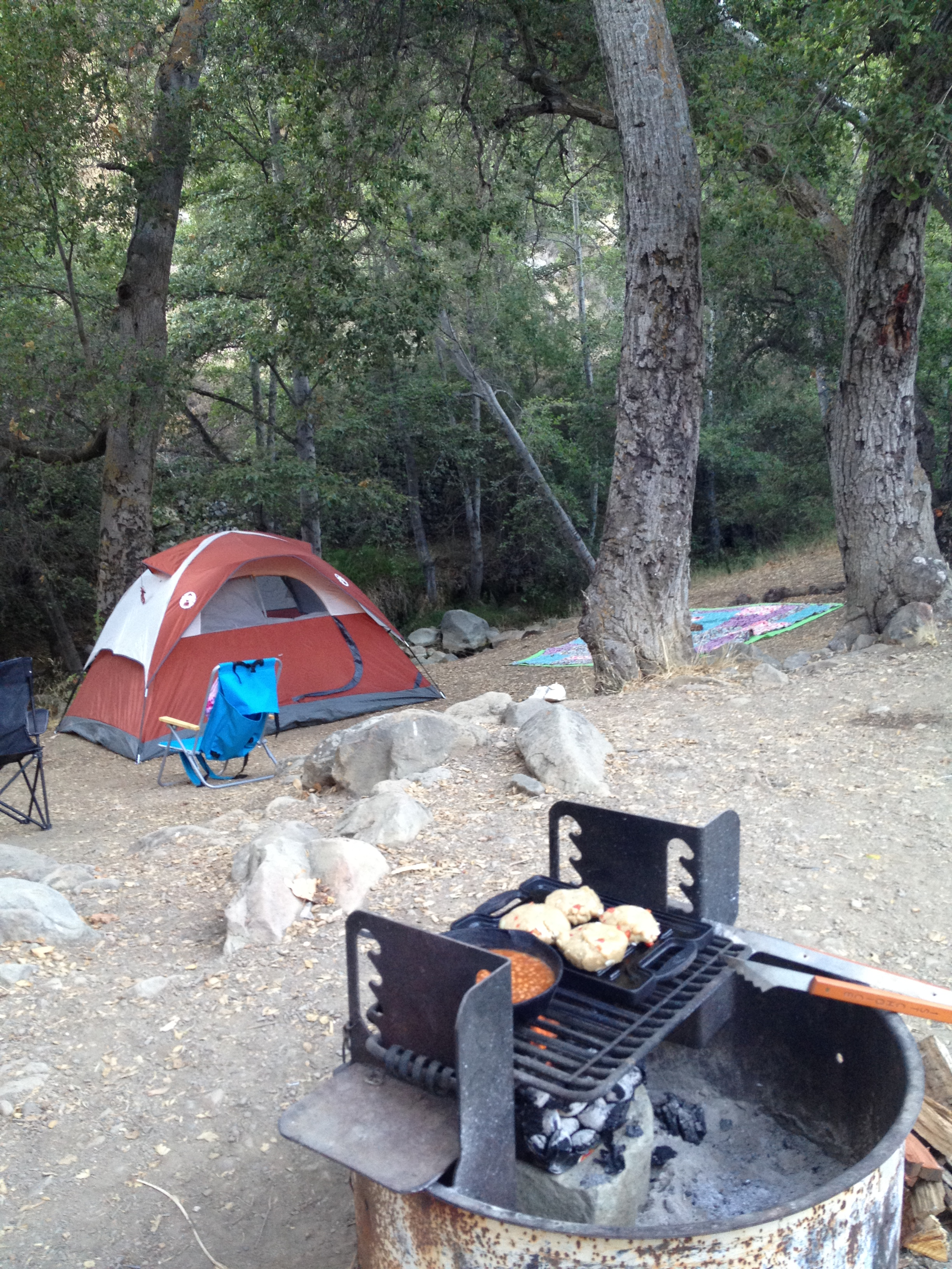 Los Padres National Forest | rightbankmomma
